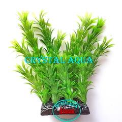 Растение Атман PP-120C, 20см
