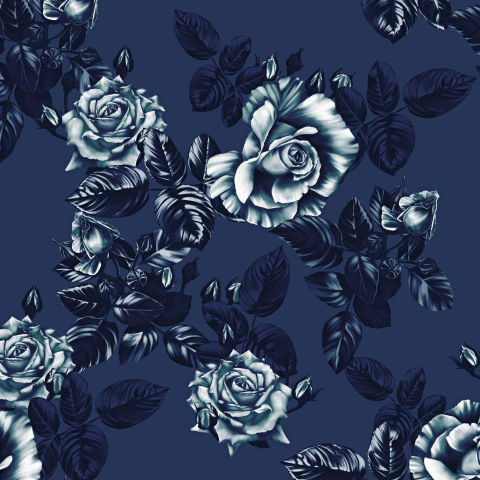 розы_07_лунная ночь