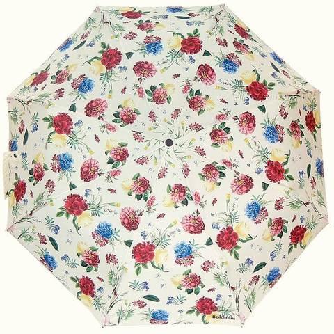 Зонт балдини садовые цветы