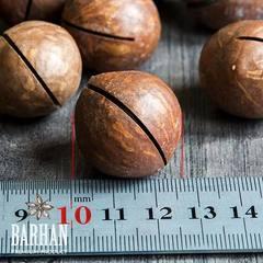 орех макадамия Австралийский