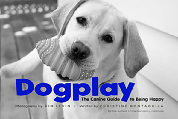 Dogplay: The Canine Guide to Being Happy