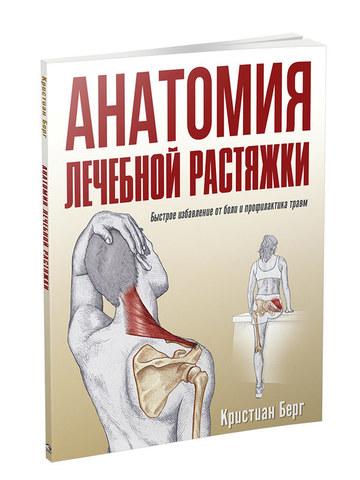 Анатомия лечебной растяжки: быстрое избавление от боли и профилактика травм
