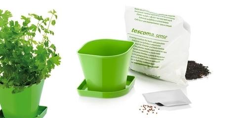 Набор для выращивания пряных растений Tescoma SENSE, кориандр
