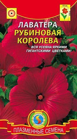 Семена Лаватера Рубиновая, Одн