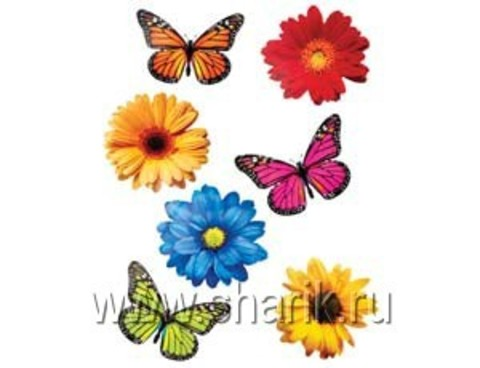 Баннер-комплект Бабочки Цветы асс 12шт/А
