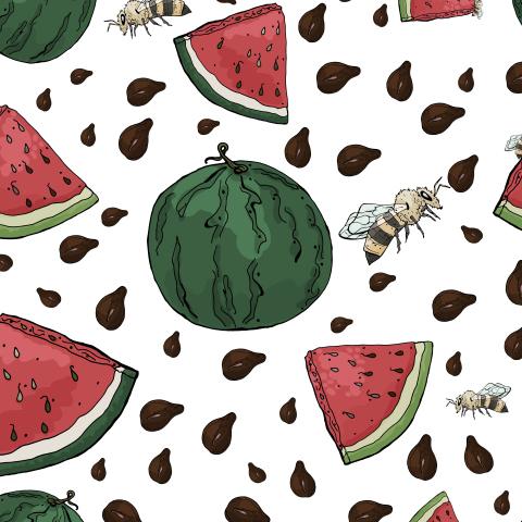 Бесшовный летний паттерн с арбузами, семечками и пчелами на белом фоне