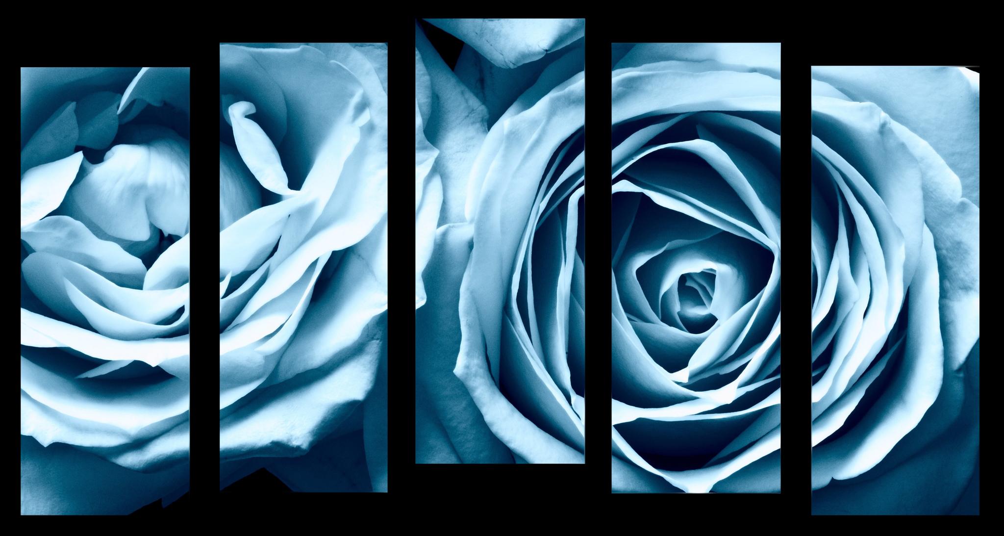 "Цветы Модульная картина ""Голубые розы"" М1048_M_загибы_110х65.png"