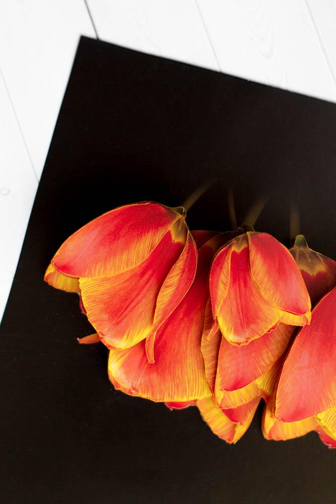 Солнечные тюльпаны- готовая работа, детали сюжета.