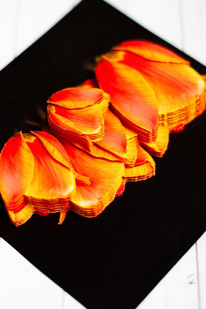 Солнечные тюльпаны- готовая работа, вид сверху.