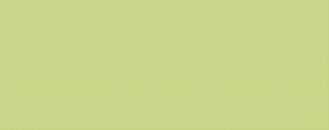 Плитка настенная KERLIFE Splendida Verde 505х201