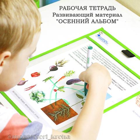 РАБОЧАЯ ТЕТРАДЬ. Печатный развивающий материал
