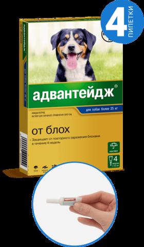 Адвантейдж для собак более 25 кг   4 пип.