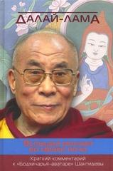 Далай-лама  Вспышка молнии во мраке ночи. Краткий комментарий к «Бодхичарья-аватаре» Шантидевы