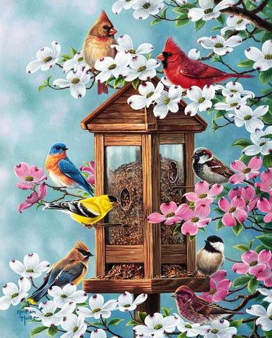 Картина раскраска по номерам 40x50 Скворечник с птицами