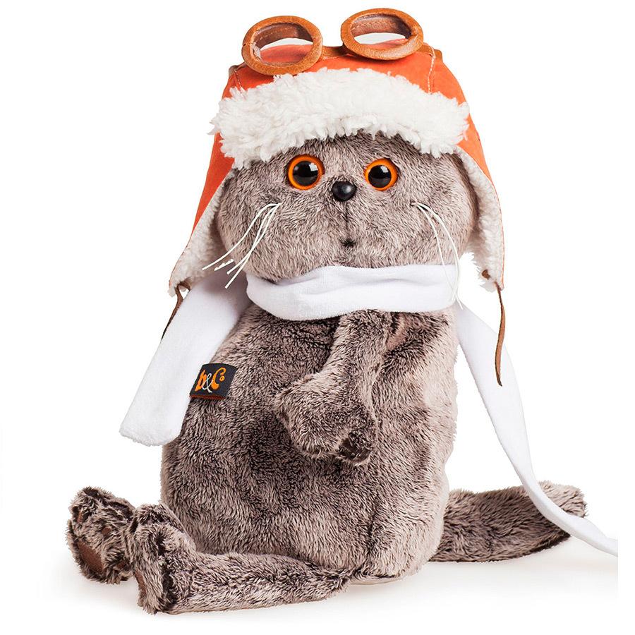 Кот Басик в шлеме и шарфе