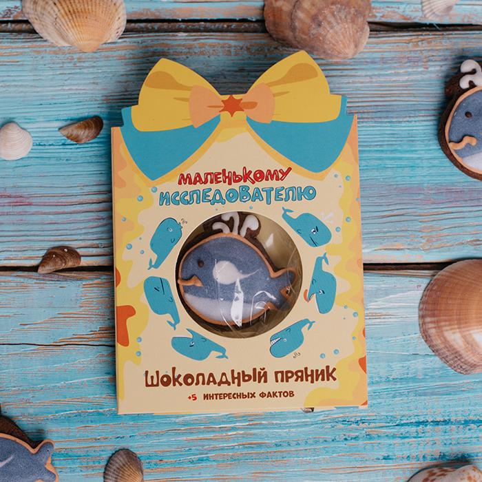 Маленькому исследователю. Купить открытку с шоколадным пряником в Перми