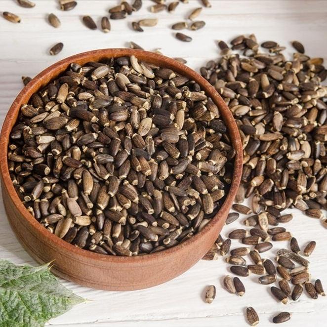 Семена Расторопша, семена silybum-seed-01.jpg