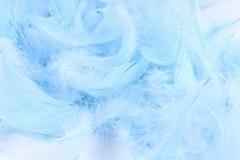 Перья голубые в пакете 10 гр 026.