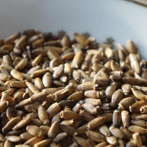 Расторопша, семена