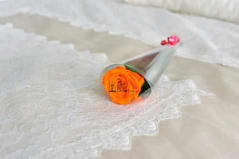 Роза на стебле Premium Оптом Высота*Бутон (37см*5-6см) Цвет оранжевый