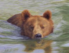 Картина раскраска по номерам 40x50 Медверь плывет в реке