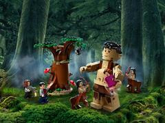 Конструктор Гарри Поттер 11569 Запретный лес: Грохх и Долорес Амбридж 279 дет