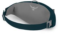 Сумка поясная Osprey Daylite Waist Petrol Blue - 2