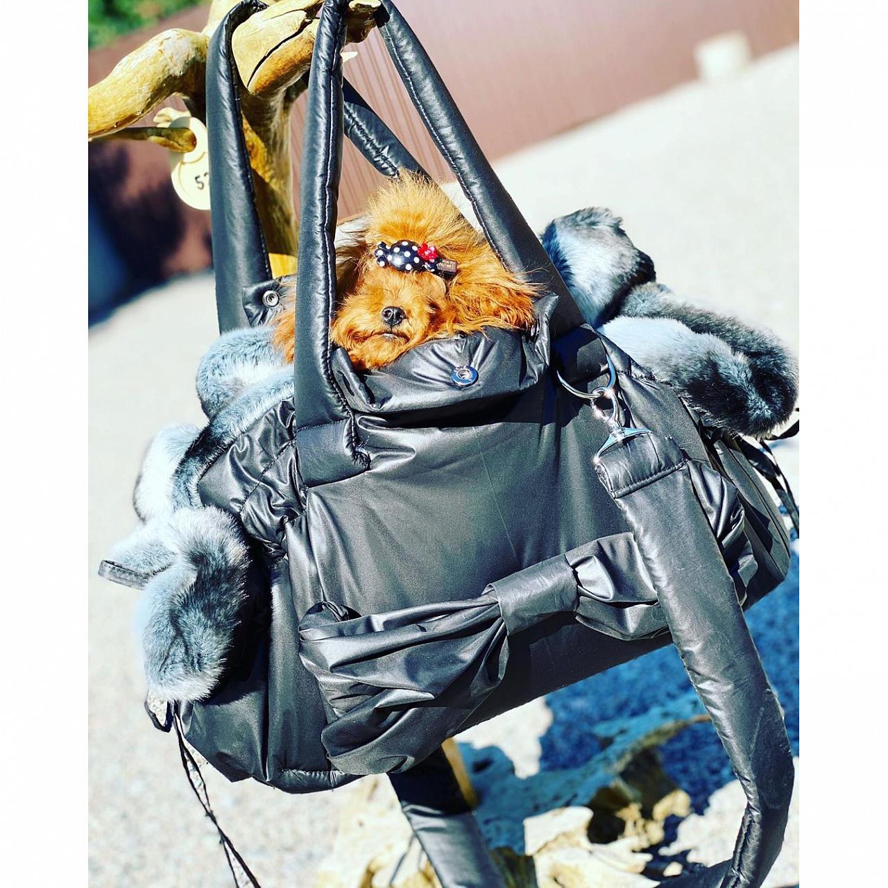 1098/4 сумка для собак шиншила черная