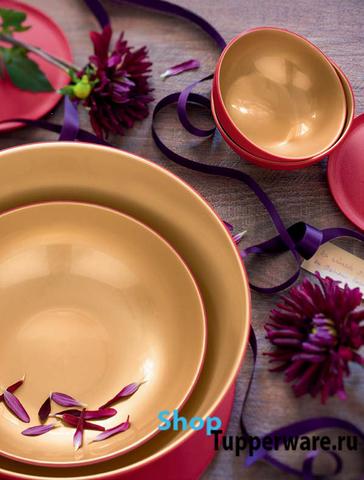 Аллегро чаша 5л в красно-золотом цвете