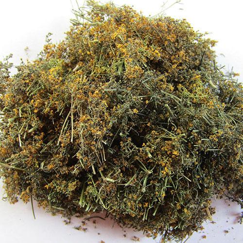 Травы Подмаренник galium-492.jpg