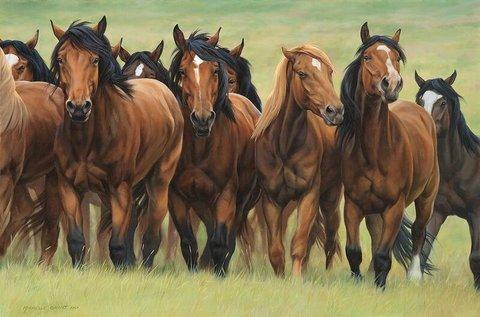 Картина раскраска по номерам 40x50 Коричневые лошади