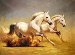 Картина раскраска по номерам 40x50 Две белые лошади