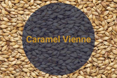 Солод Карамельный Венский / Caramel Vienne, 40-70 EBC ,1 кг