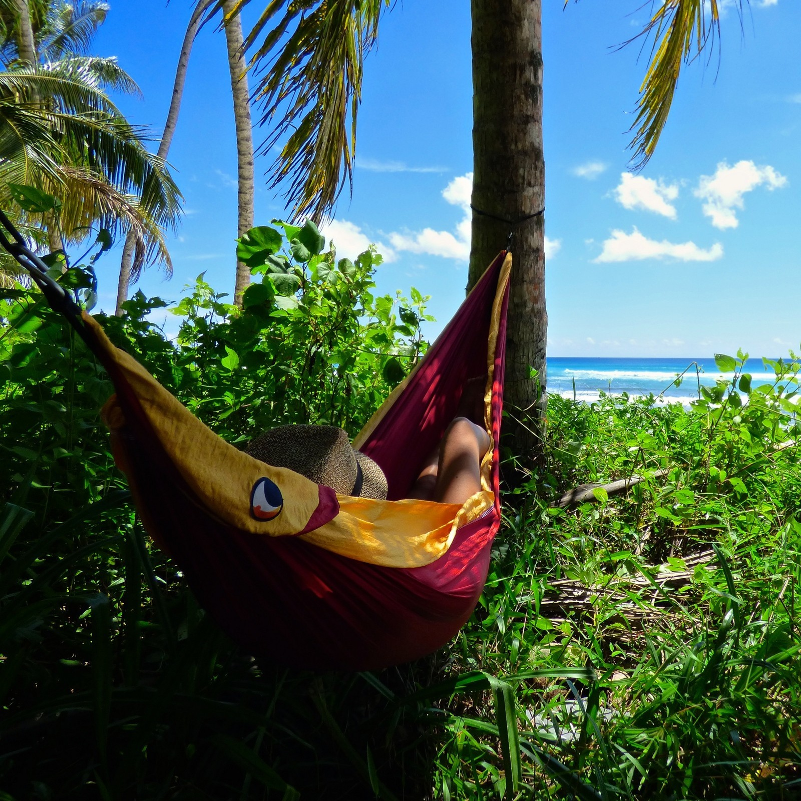 Гамак висит под пальмами.
