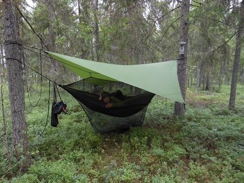 Тент над гамаком в лесу.