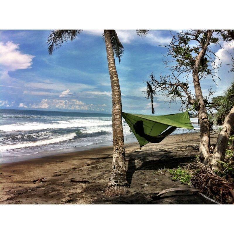 Тент над гамаком между пальмами.