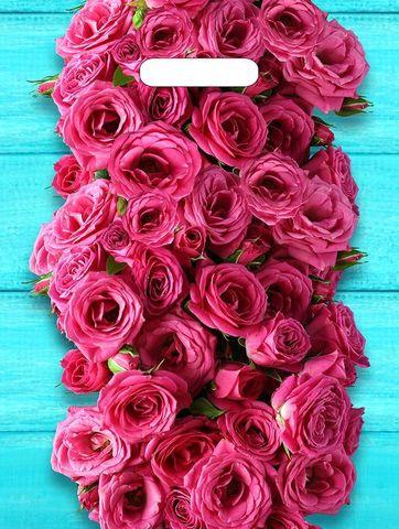 Пакет ПЭ с вырубной ручкой 31х40 (60) Т ламинация (Дачные розы)