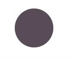 Краска Shik  для бровей Графит/Graphite