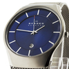 Купить Наручные часы Skagen 956XLTTN по доступной цене