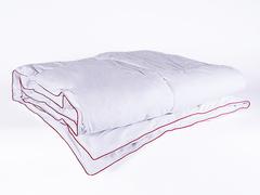 Одеяло пуховое кассетное зимнее 200х220 Ружичка