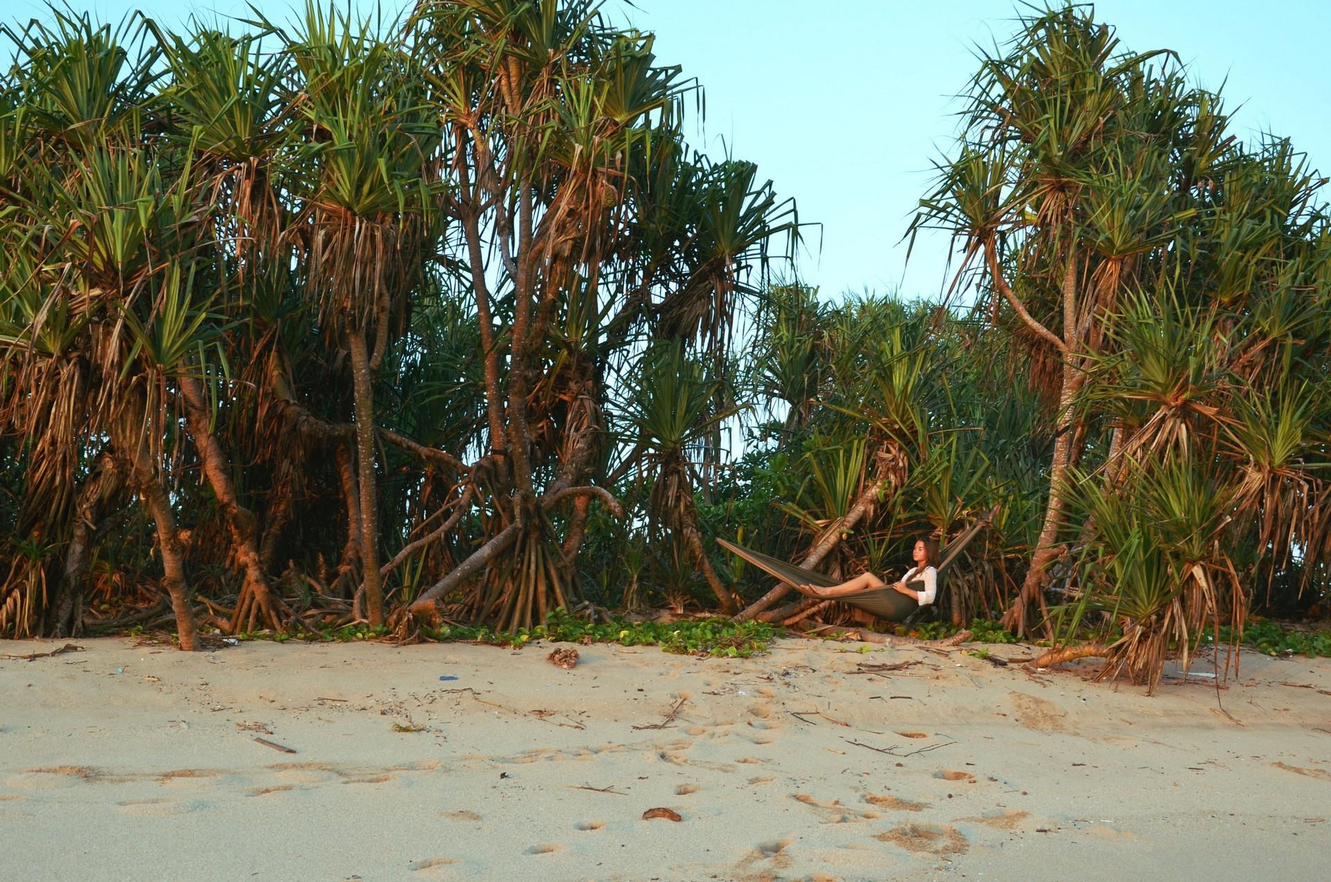 Только я, гамак и пальмы.