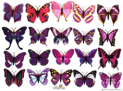Печать на сахарной бумаге, Набор Бабочки 5