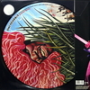 Jimi Hendrix / Merry Christmas and Happy New Year (Picture Disc)(12