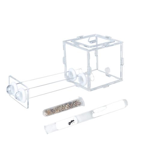 стартовый набор с Messor structor