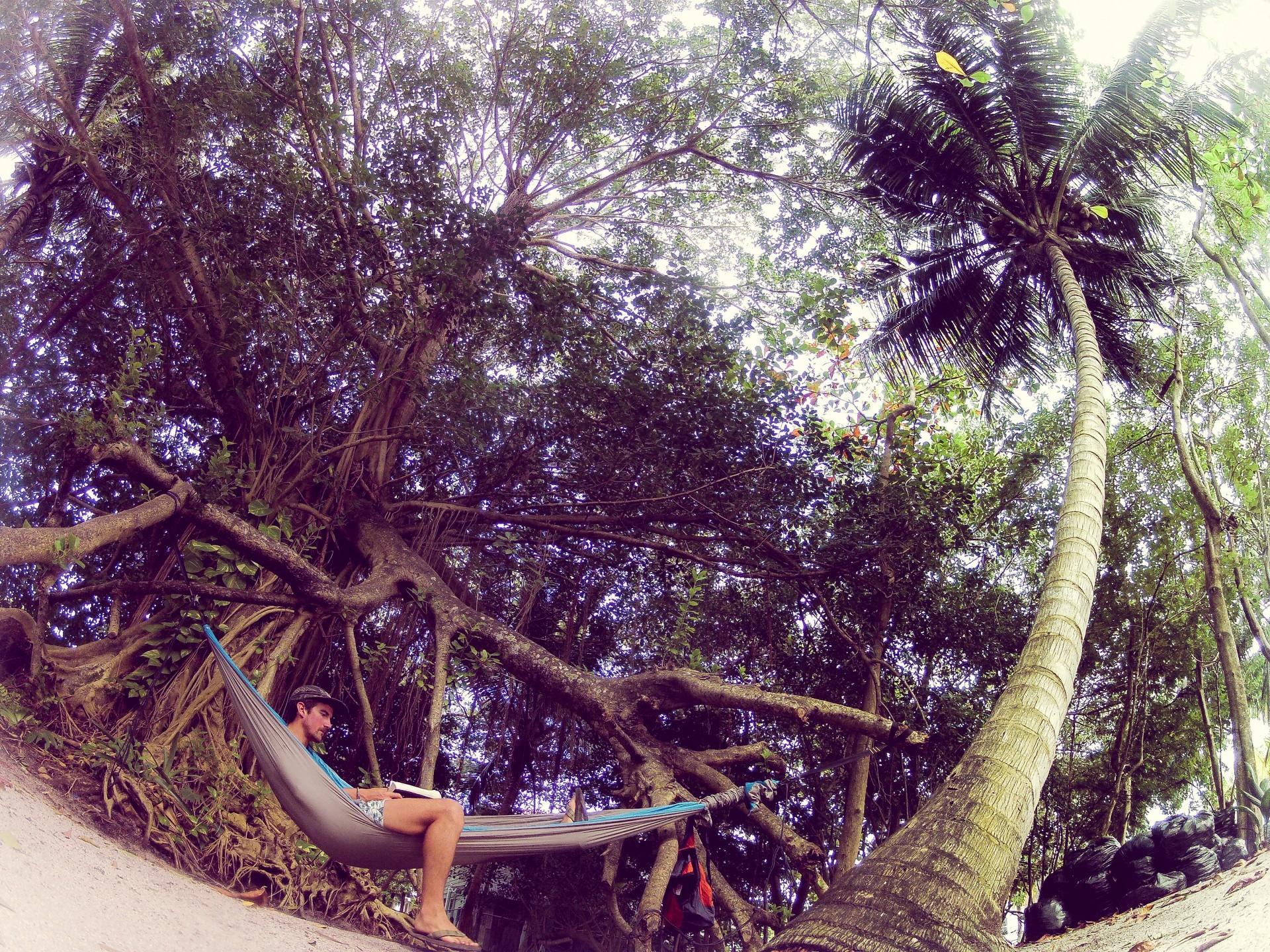 Путешествие по джунглям и мой отдых в гамаке.