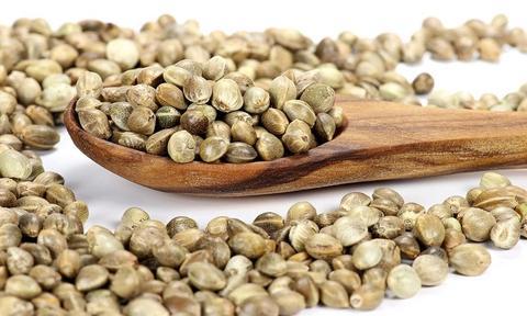 Семена Конопли, 100 гр