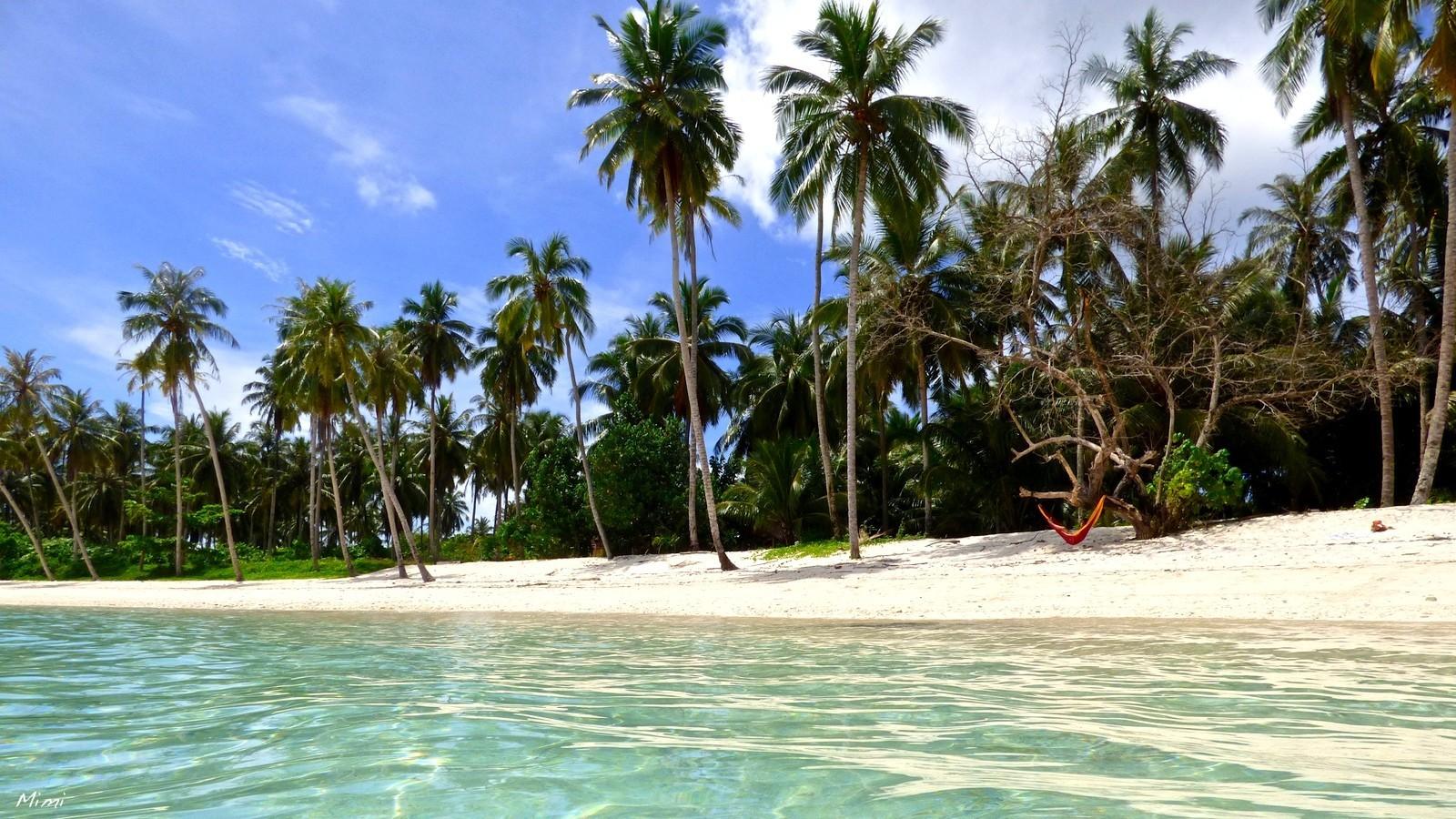 Гамак на тропическом острове.