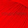 Gazzal Baby Cotton 3443 (Красный мак)