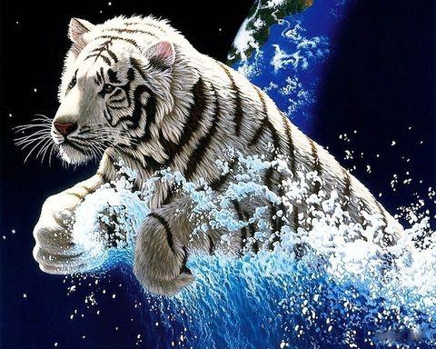 Алмазная Мозаика 20x30 Черно-белый сказочный тигр