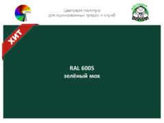 Цвет полимерного покрытия RAL 6005 зелёный мох | АЙГРЯДКИ!